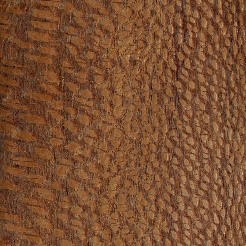 Funier Silky Oak Australien Rotbraun
